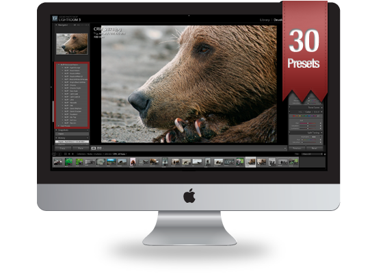 Lightroom Presets Running on iMac