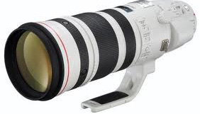 Canon 200-400 FI